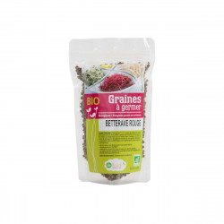 Graines à germer Betteraves BIO - 100g